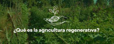Agricutura Regenerativa